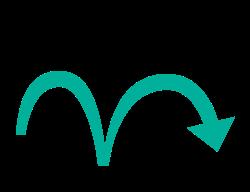Kangourou icon